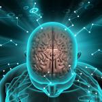 psikoterapi beyni değiştirir